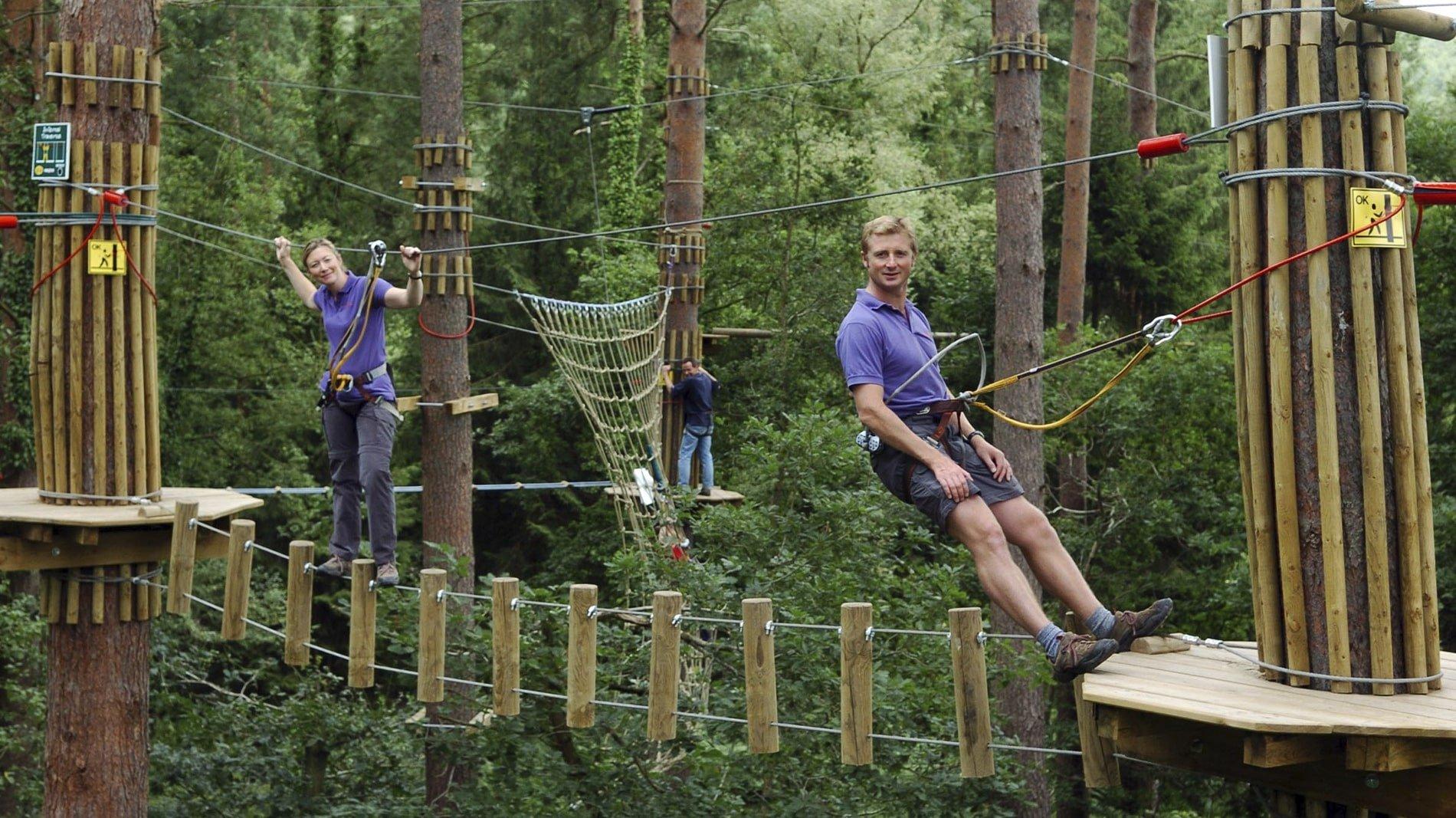 Go Ape Bedgebury Forest